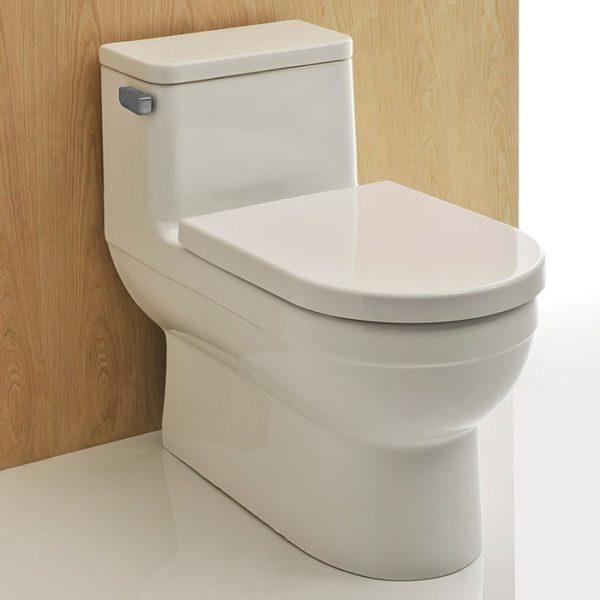 Dune Ii 1 Piece Toilet